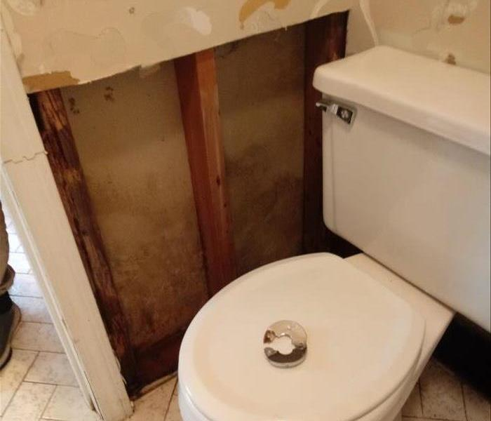 drywall next to toilet is completely gone, showing nice clean and dry studs