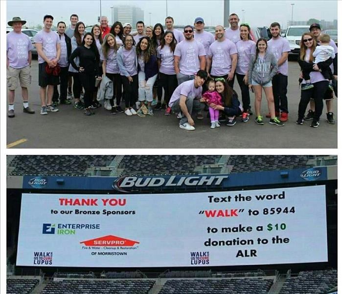 2015 Walk To End Lupus Now ™
