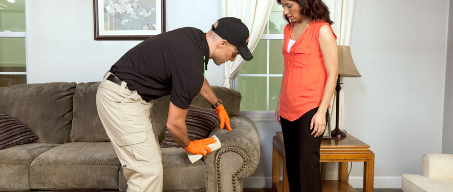 Morristown, NJ carpet upholstery cleaning